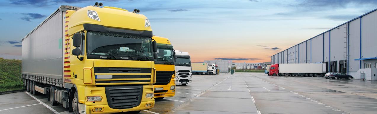 Inbound WMS System Process European Logistics and Transport